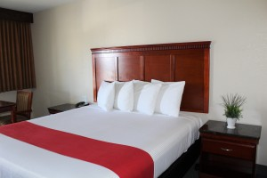 Hotel V SFO Airport - Rooms with 1 Bed